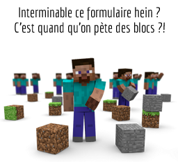 Interminable ce formulaire hein ? C'est quand qu'on pte des blocs ?!